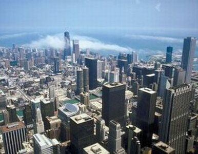 Chicago tnie koszty