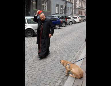 Kto ukłonił się psiakowi? Zdjęcie roku wybrane