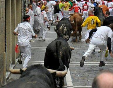 Pampeluna: uczestnicy gonitwy uciekli bykom