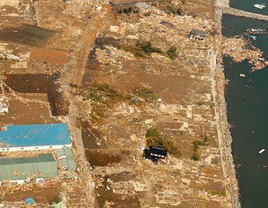 Japonia: woda z uszkodzonej elektrowni atomowej trafi do morza